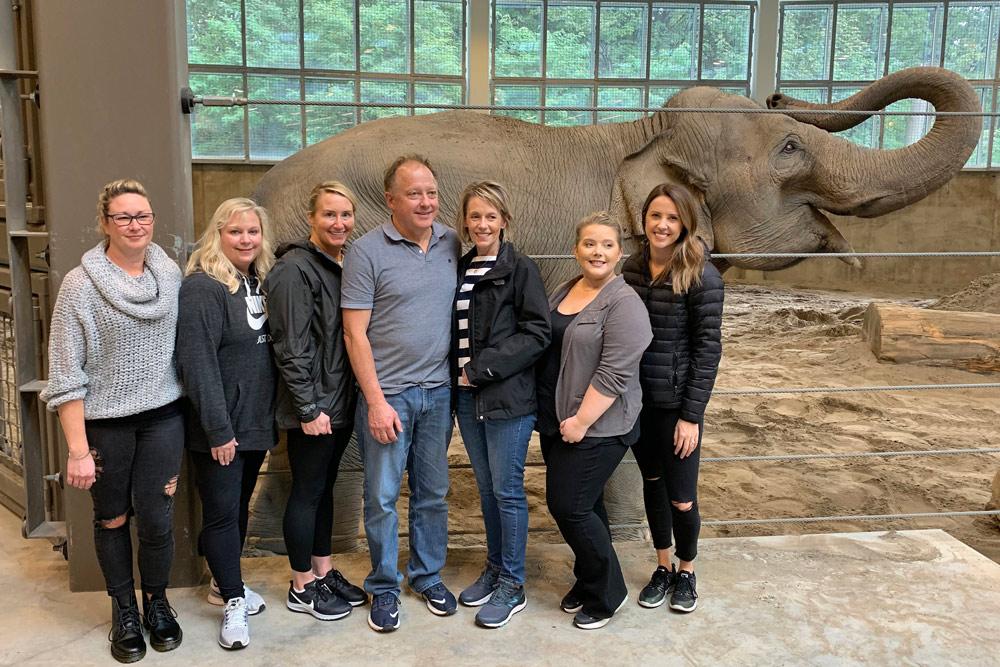 group_elephant